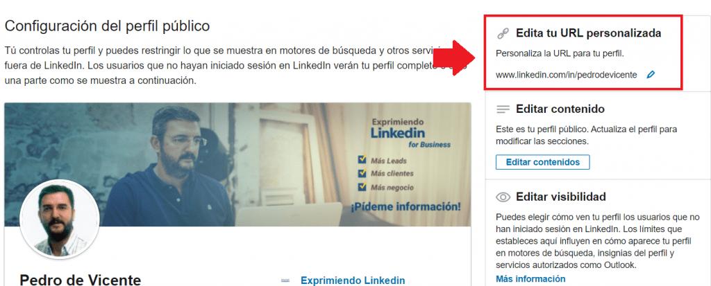 url perfil Linkedin perfil público