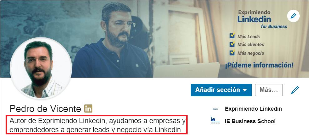 Perfil Linkedin - Titular Profesional