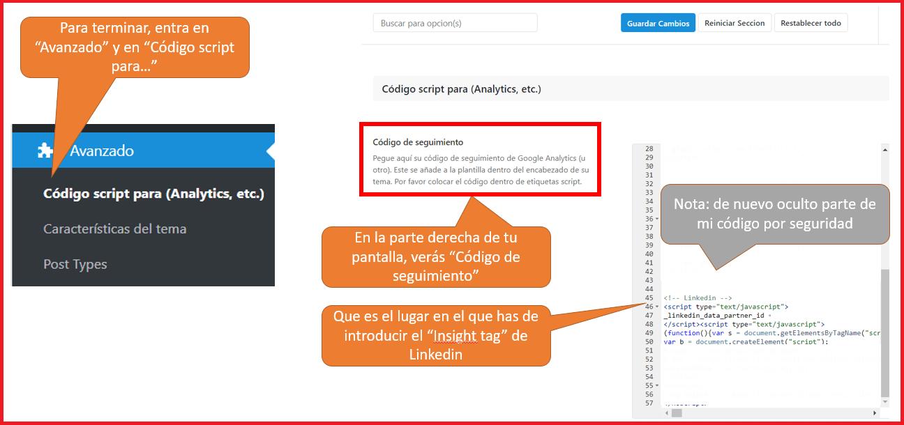 Linkedin Insight Tag - cómo ponerlo en wordpress 2